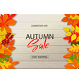 autumn sale poster with fall leaves on wooden vector image vector image