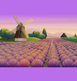 colorful with purple lavender field vector image vector image