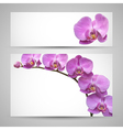 Orchid flower template
