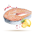 Watercolor steak fish vector image vector image