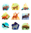 animals polygonal emblem set vector image vector image