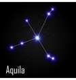 Aquila Constellation with Beautiful Bright Stars vector image vector image
