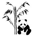 bamboo panda vector image