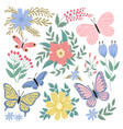 butterflies and flowers hand drawn summer vector image