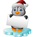 cartoon little penguin holding blank sign vector image vector image