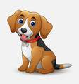 cute dog cartoon sitting isolated on white vector image