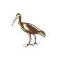 Egret Heron Crane Side Woodcut vector image vector image