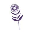 flower leaf stem botanical nature decoration vector image vector image