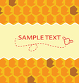 honey template vector image vector image