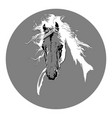 horse head with a mane hand drawn vector image