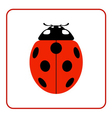 Ladybug red cartoon icon realistic vector image vector image
