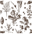 seamless pattern with hand drawn herbs and spices vector image vector image