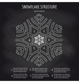 Snowflake structure on chalkboard background vector image