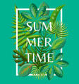 summertime background with tropical green leaves vector image