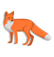 cute fox icon cartoon style vector image
