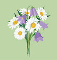 flowers isolated floral summer bouquet vector image vector image