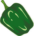 whole green bell pepper vector image vector image