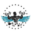 athlete with dumbbells symbol for the gym vector image vector image