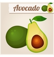 Avocado Detailed Icon vector image vector image
