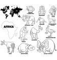 educational african animals coloring book page vector image vector image