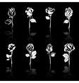 icon set of flowers roses with reflections on blac vector image vector image