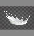 milk splash realistic vector image vector image