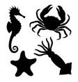 sea life symbols vector image