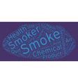 The Hazards of Secondhand Smoke text background vector image vector image