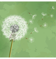 Vintage floral green background with flower vector image