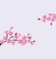 cherry blossom sakura tree banner with blank copy vector image vector image