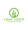 circle leaf logo icon design template vector image vector image