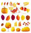 Autumn set 2 vector image vector image