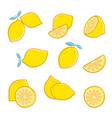 cut lemon fresh citrus fruit lemon slice and vector image