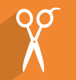 hairdressing tool vector image