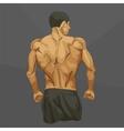 Muscular man body vector image vector image
