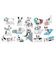 set of problem with bad dog behaviour collection vector image
