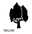 willow icon simple style vector image vector image