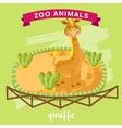 Zoo Animal Giraffe vector image vector image