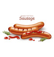 sausage with ketchup realistic isolated on vector image
