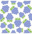blackberry seamless pattern for wallpaper or vector image