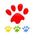 colorful dog paw prints symbol design template vector image