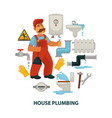 house plumbing promotional poster with plumber and vector image vector image