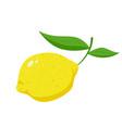 lemon fruit icon vector image vector image