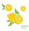 Lemon Isolated fruit on white background vector image vector image