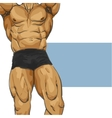 Muscular man body vector image vector image