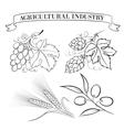set emblems and labels vector image