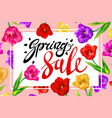 spring sale banner colotful tulips flowers pink vector image