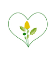 Yellow Paracress Flowers in A Heart Shape vector image vector image