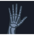 X Rays Style Human Hand vector image