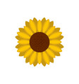 circle of sunflower icon flat style vector image vector image